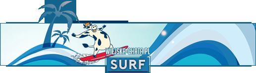 surfnb.png